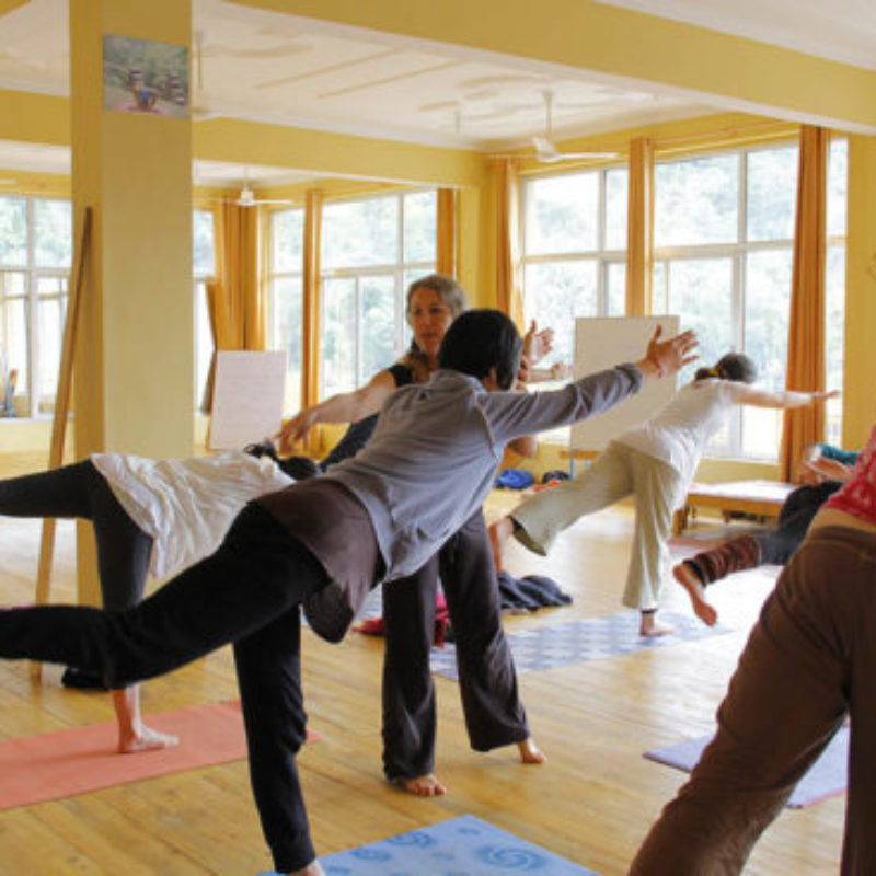 Les cours de Yoga