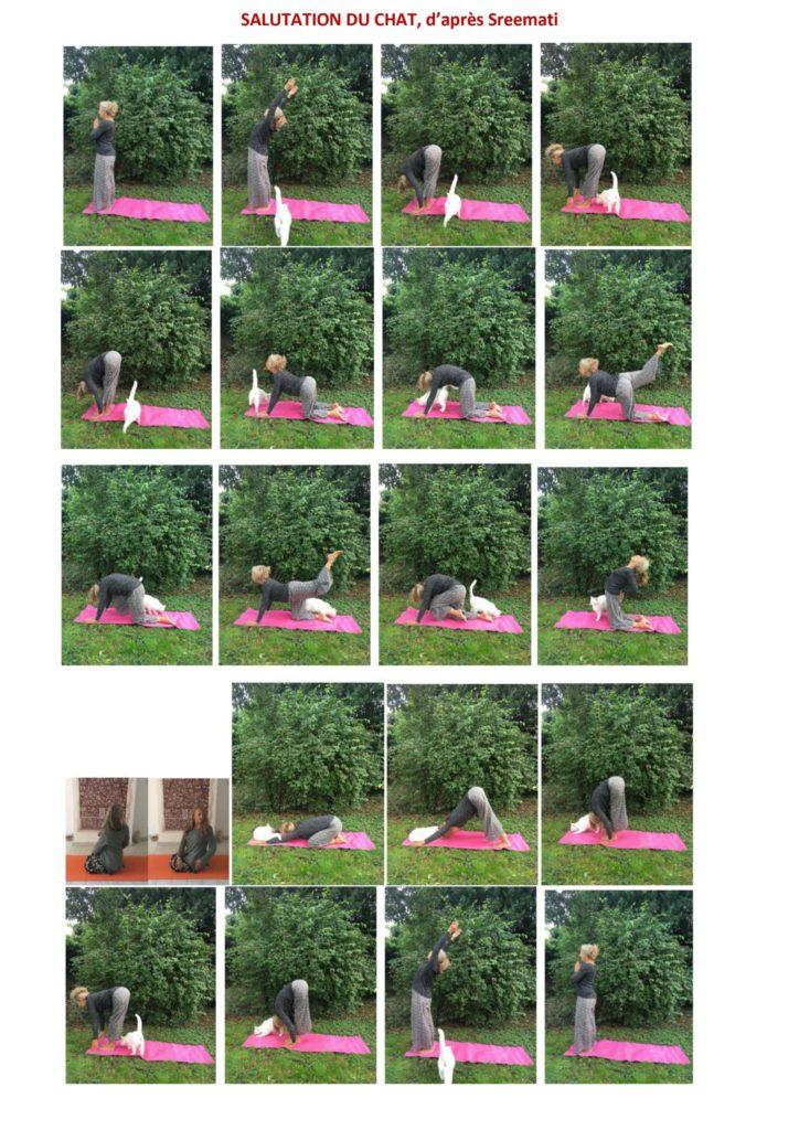 salutation du chat yoga reiki delia arles
